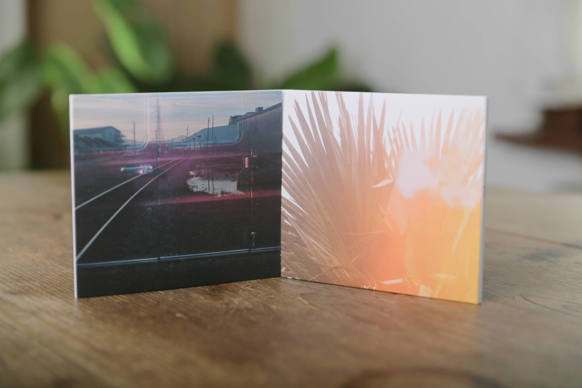 'Onderwoud'  CD Album